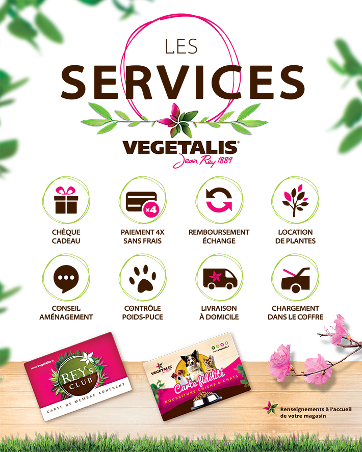 VEGETALIS-Plexi-Services