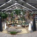 Participant du concours Notre Jardinerie en photo - Charlotte