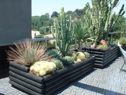 Une très belle réalisation de succulentes en bac sur un balcon.